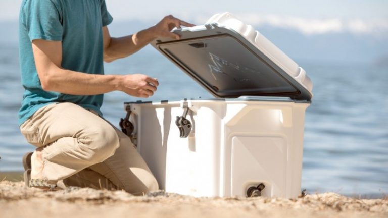 9 Best Ice Chests Reviews-Buyer Guide 2021