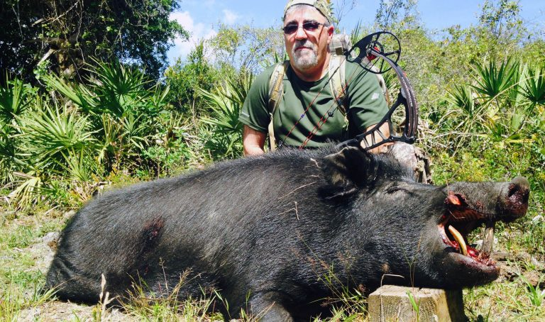TOP 3 WILD BOAR HUNTING LOCATIONS IN THE U.S.