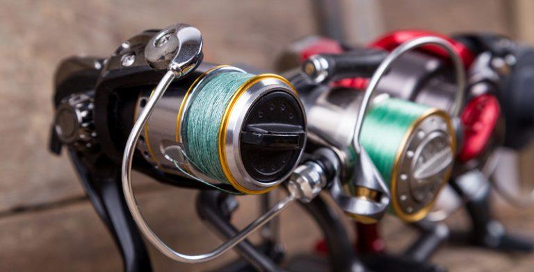 5 Best Saltwater Spinning Reels Reviews- Buyer Guide 2021