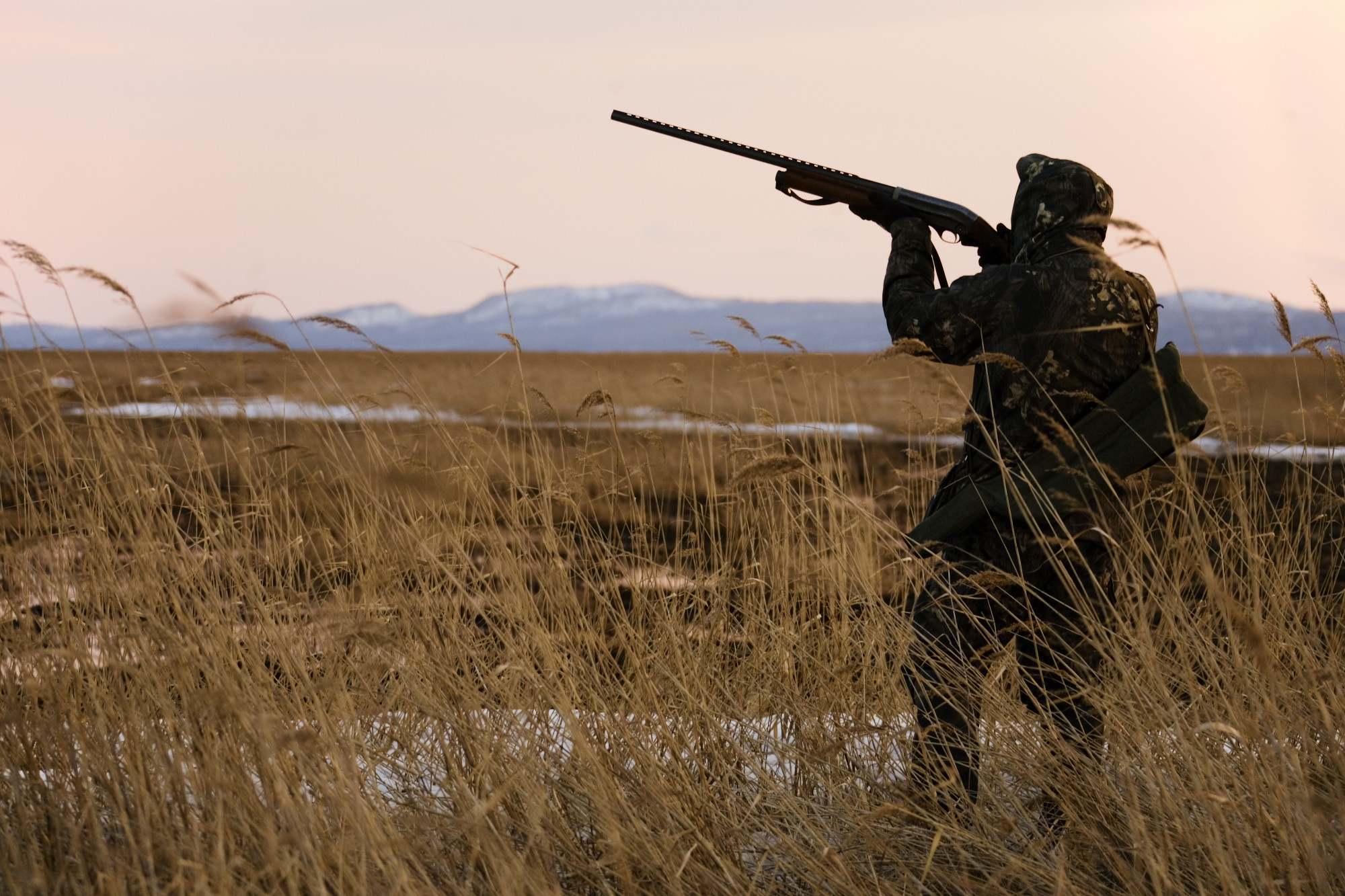 6 Duck Shooting Tips for Your First Waterfowl Hunt