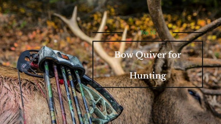 7 Best Bow Quiver for Hunting Reviews and Buyer Guide 2021