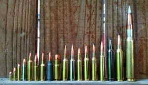 Best Rifle Caliber for Home Defense and Hunting