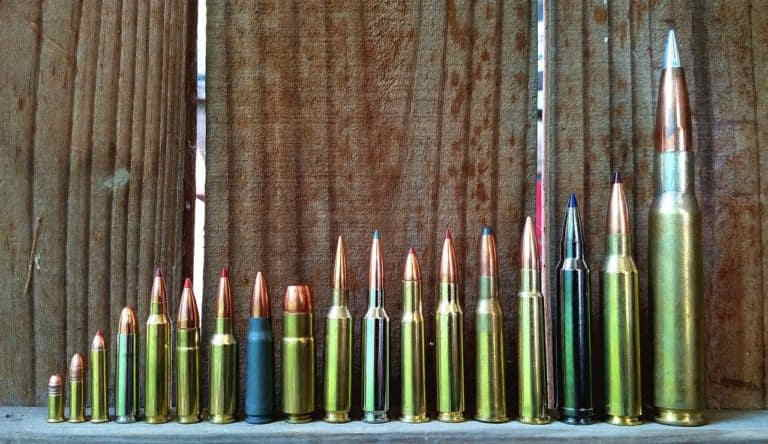 The Best Rifle Caliber for Home Defense and Hunting