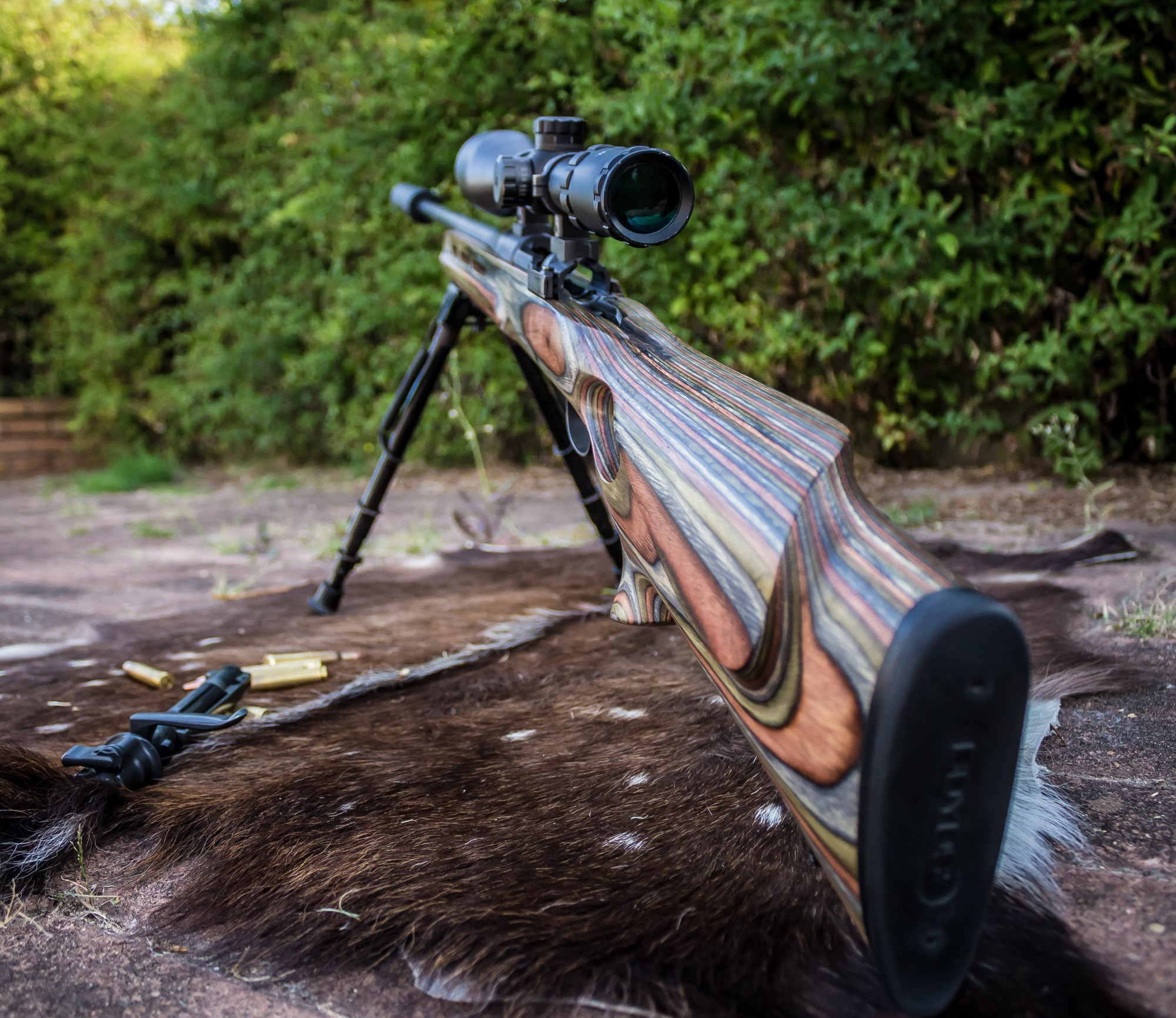 Mount a Scope to Your Rifle