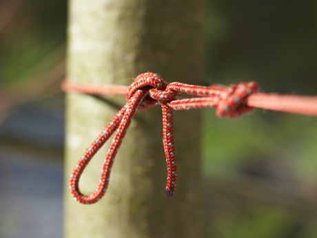 Camping Knots for Every One