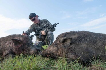 Hog Hunting Tips for Beginners