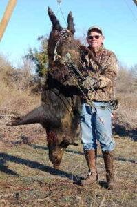 Wild Hunting