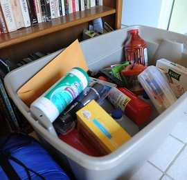 A Survival Kit: What Is It Composed of?