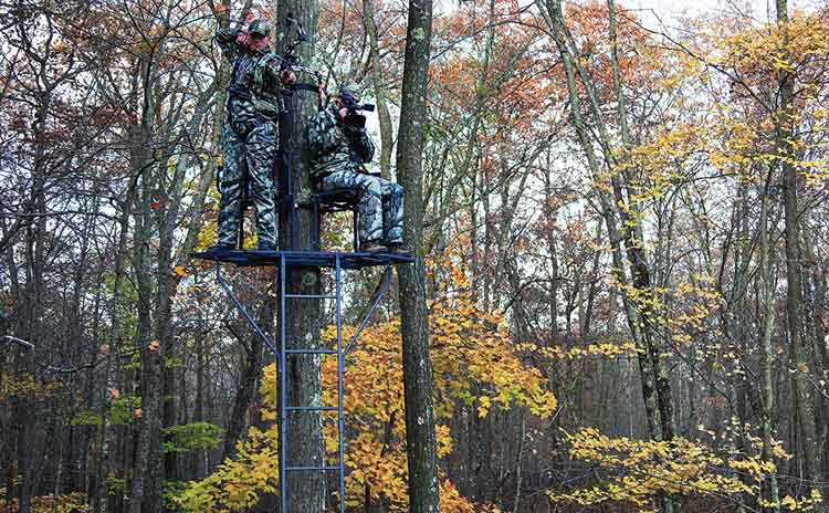 5 Best Ladder Stand For Deer Hunting | Guide and Reviews