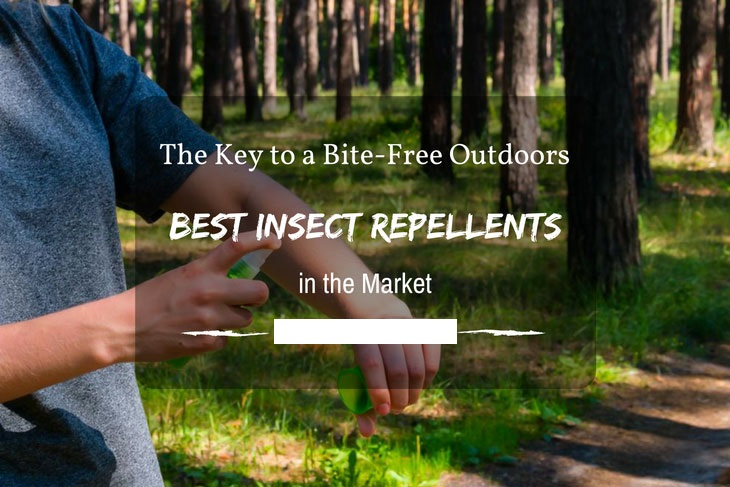 Best Insect Repellents For Camping