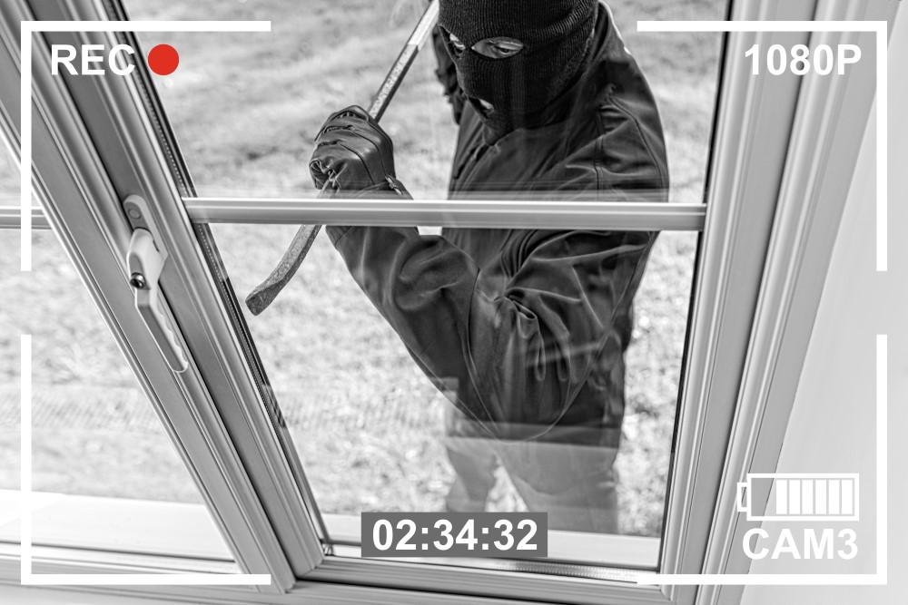 Main Burglary and Theft Statistics for 2020
